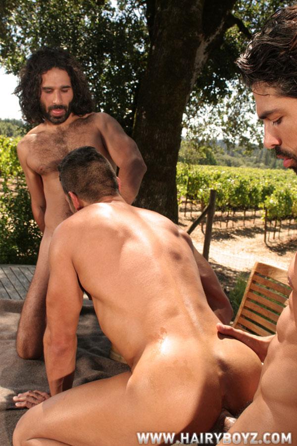 Seo Gay Suruba Homens Gays Sarados Safados Big Dotados