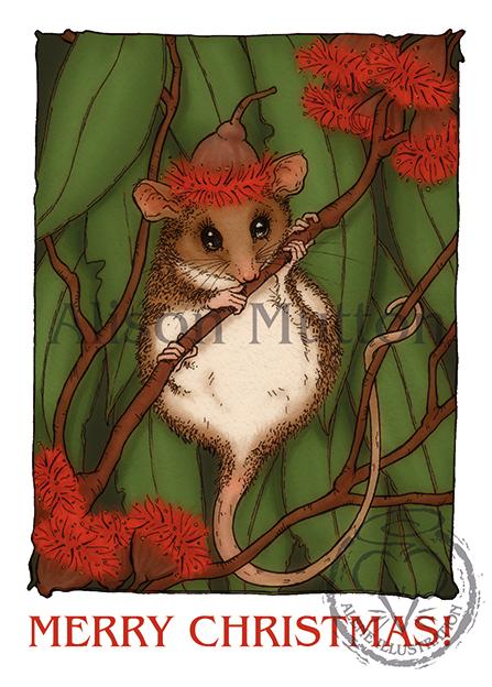 Alene Illustration: Illustration: Pygmy Possum Christmas Cards