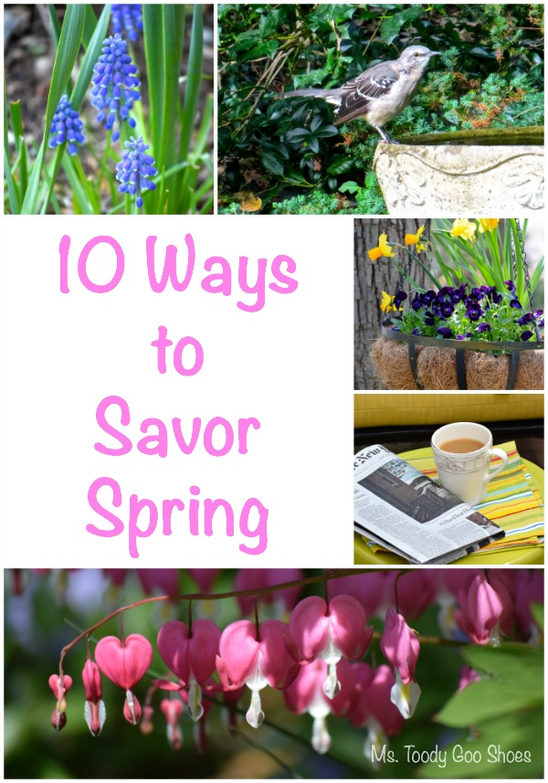 10 Ways To Savor Spring | Ms. Toody Goo Shoes #gardening #backyardbirding