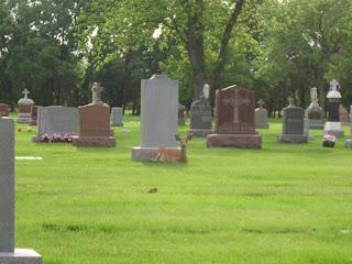 Cemitério Bosque Park Tulsa Resurrection+Cemetery