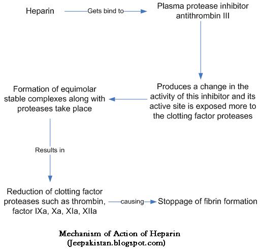 Your Source of Information: Heparin