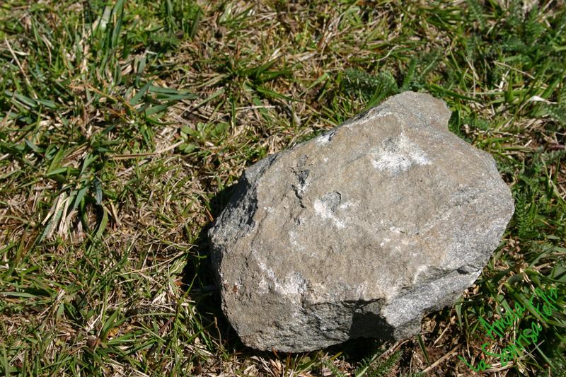 piedra grande en el camino