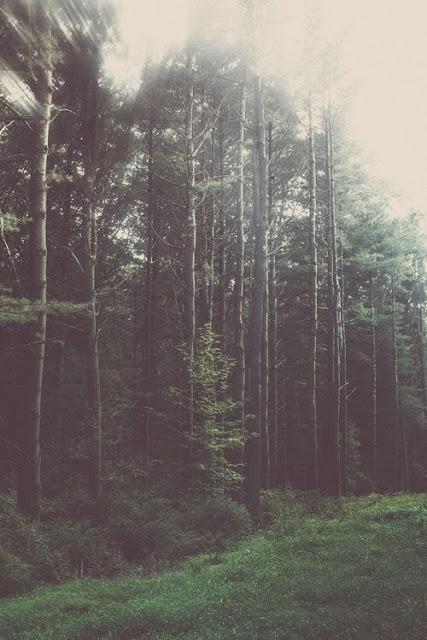 escapar… y respirar