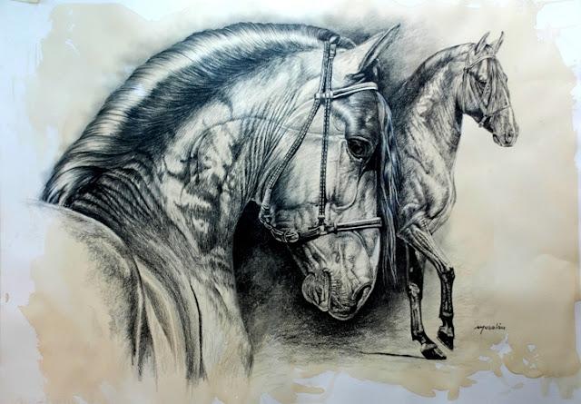 caballos-en-carboncillo
