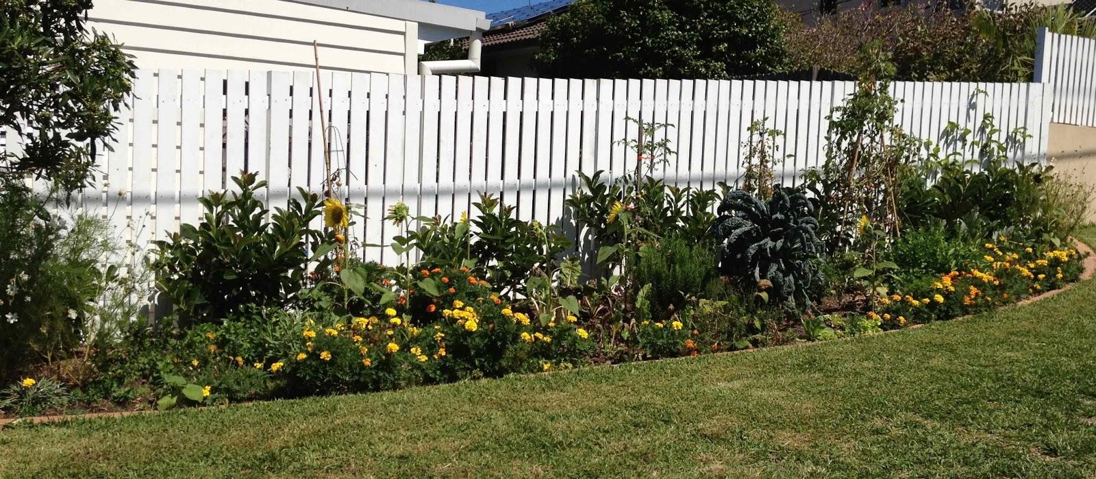 Sustainable garden design native gardens permaculture for Sustainable garden design