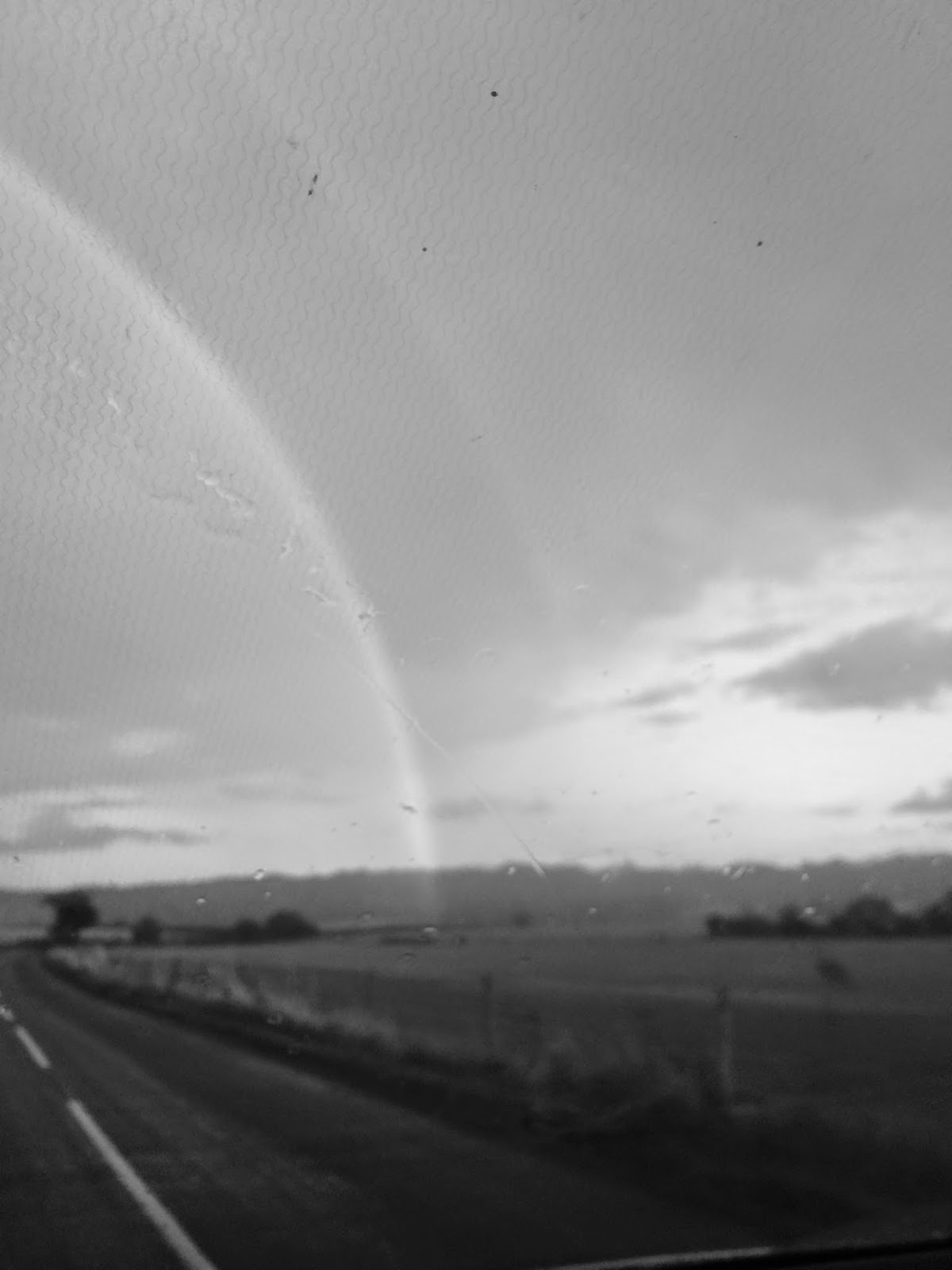 rainbow in black and white