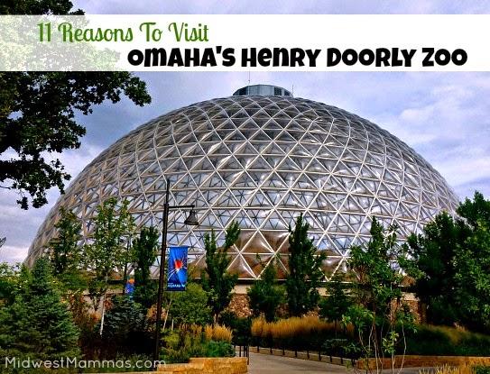 11 Reasons to Visit Omahas Henry Doorly Zoo