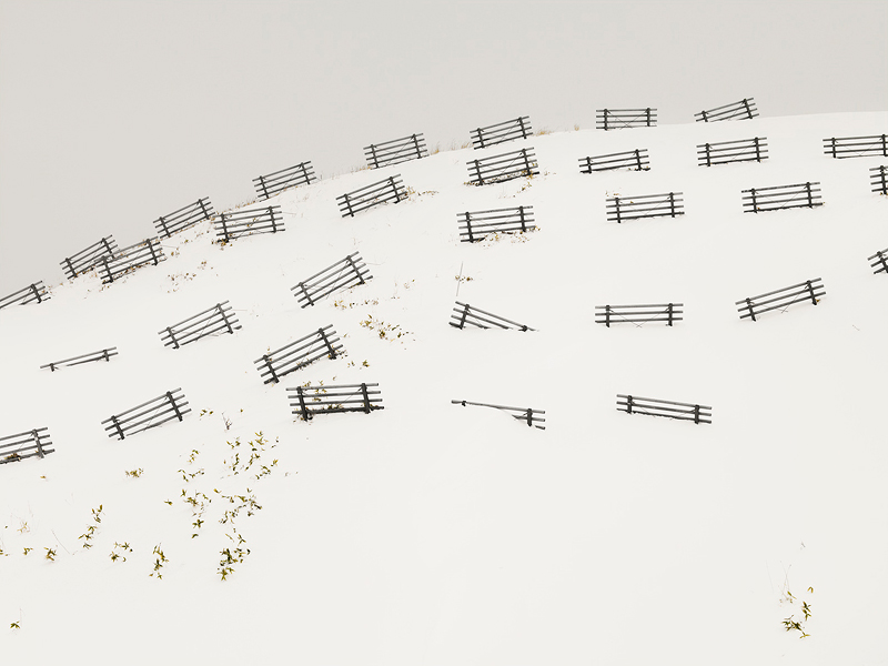 nuncalosabre. Patience - ©Josef Hoflehner