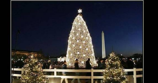 - Does The Bible Prohibit Christmas Trees?