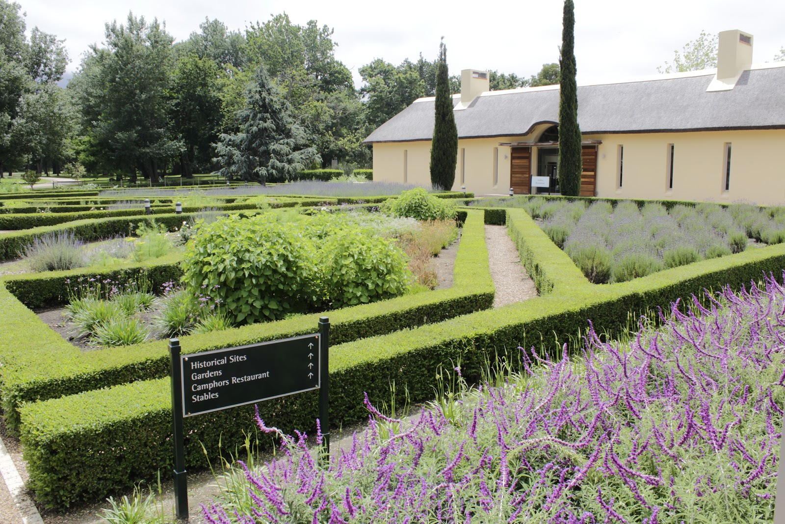 figs flowers food: VERGELEGEN - a world class Wine Estate, the name ...