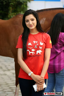 Actress Richa Panai Pictures in Jeans at Blue Cross Pet Carnival 2014  0036.jpg