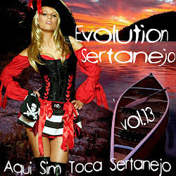 Evolution Sertanejo Vol.13 2013
