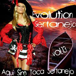 Download – CD Evolution Sertanejo Vol.13