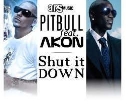 Lirik Lagu Pitbull ft. Akon - Shut It Down