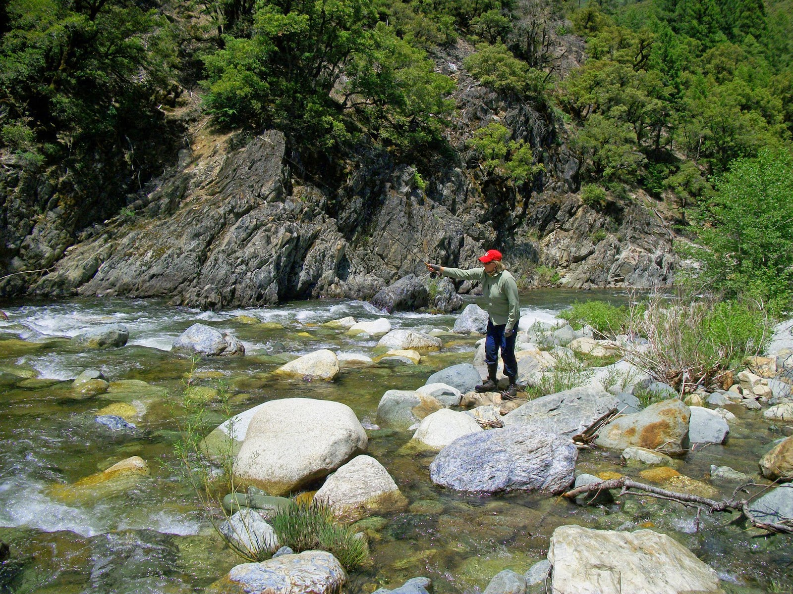 Jon baiocchi fly fishing news north fork yuba river for Chicago fly fishing