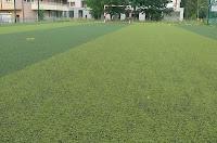 memilih karpet futsal