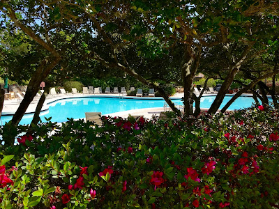 Villas of Grand Cypress Pool