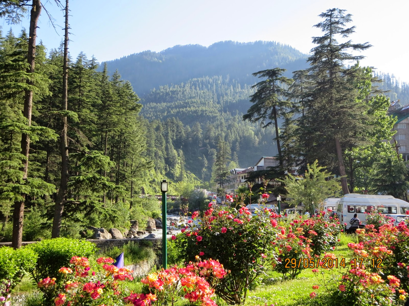 Manali - Picturesque view
