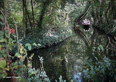 Hortillonnages, Amiens © Laura Prospero