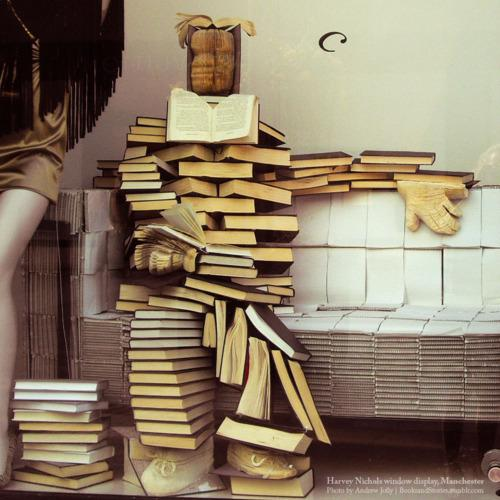 livros estantes diferentes como guardar
