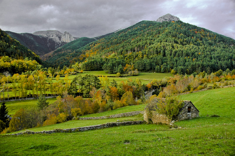Fernandinho marconi valles for Pisos en montornes del valles