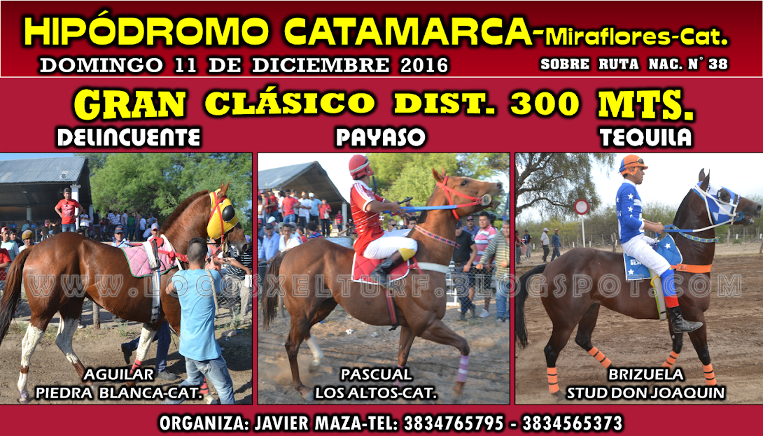 11-12-16-HIP. CATAMARCA-CLAS.