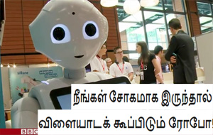 Meeting Pepper, the domestic robot