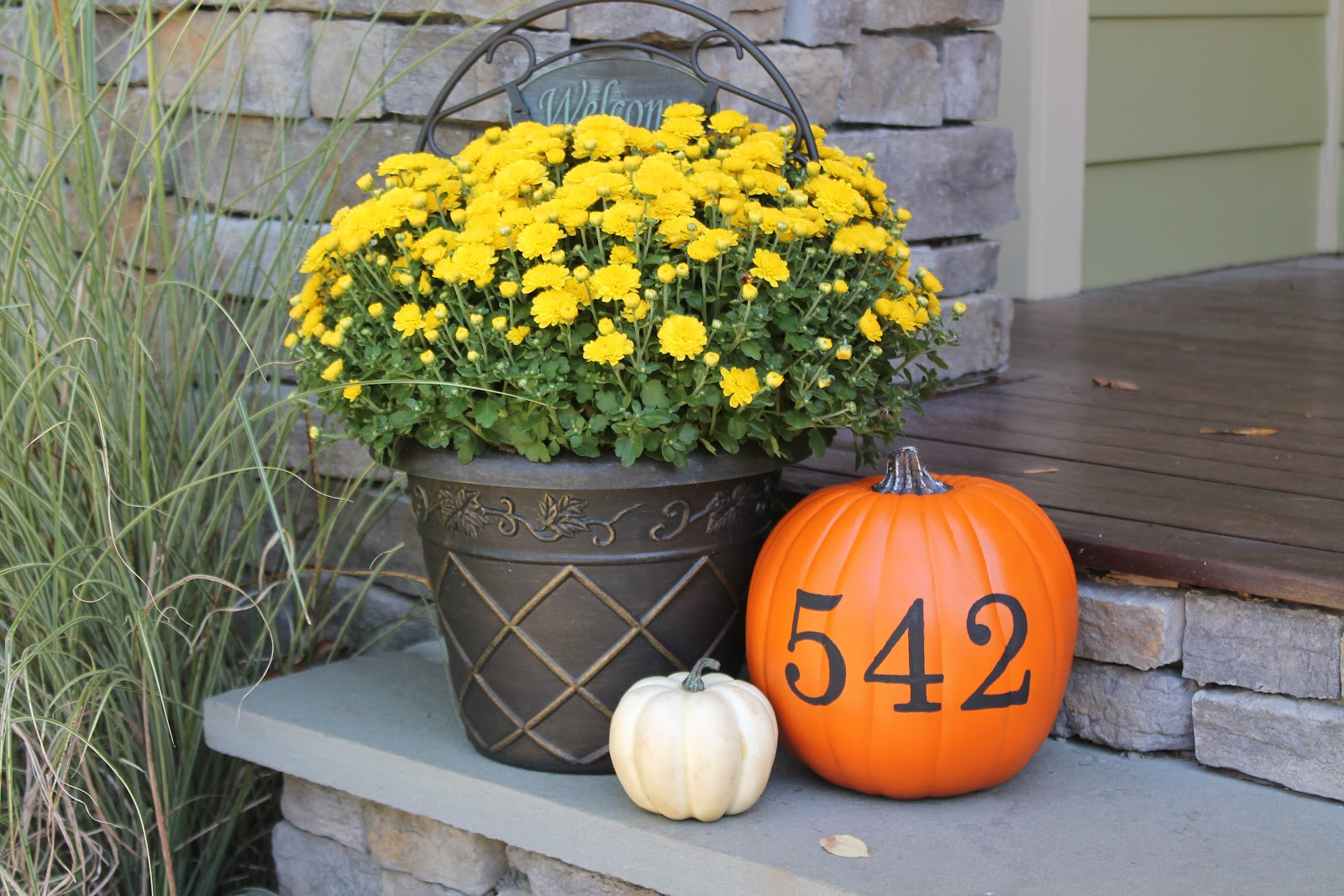 Painted Pumpkins Carolina Charm