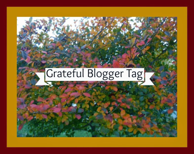 Grateful Blogger Award