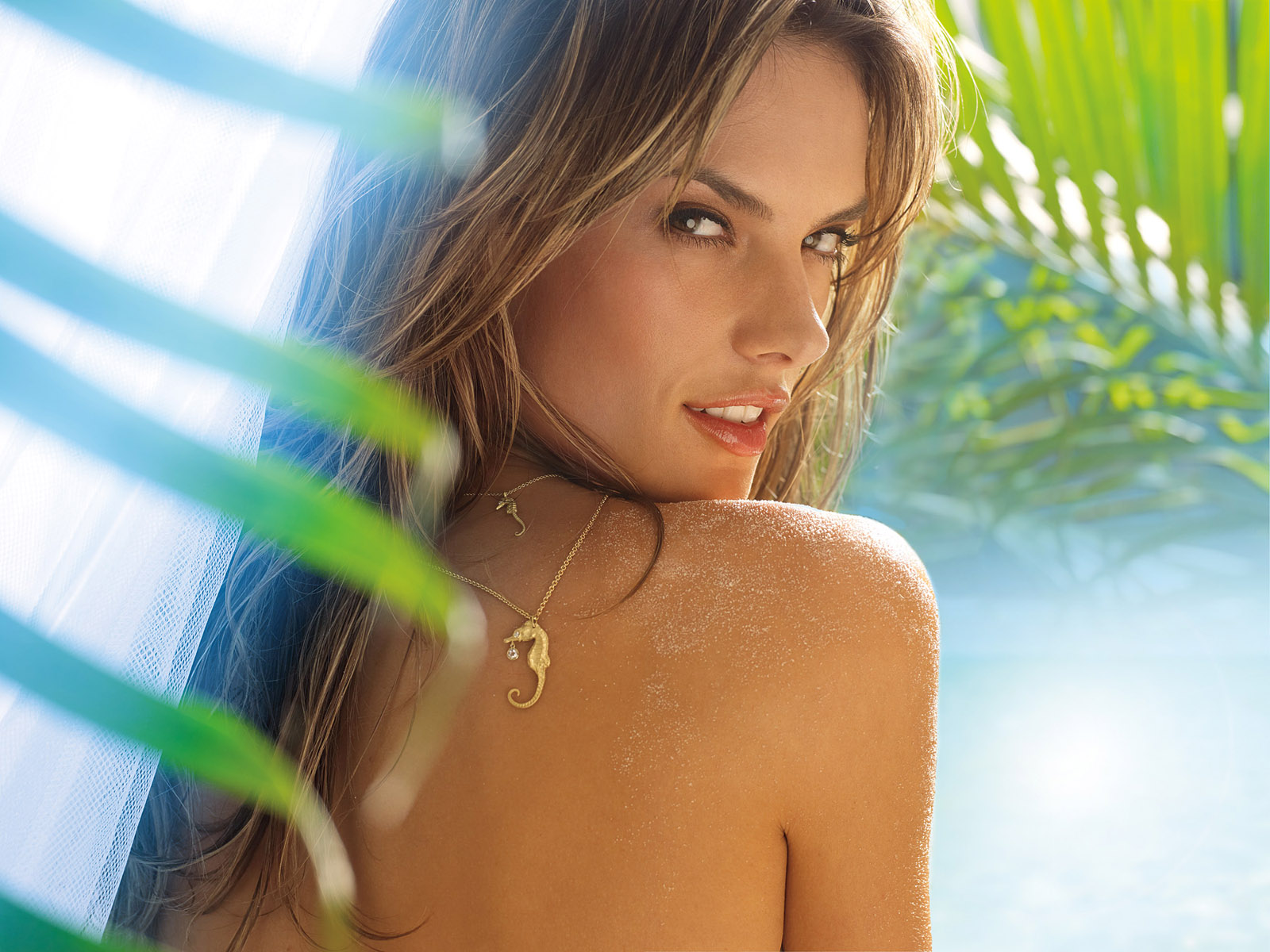 alessandra ambrosio wallpapers - photo #4