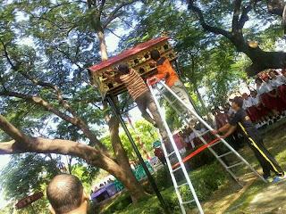 Bebas Bermain Burung di Taman Madukoro