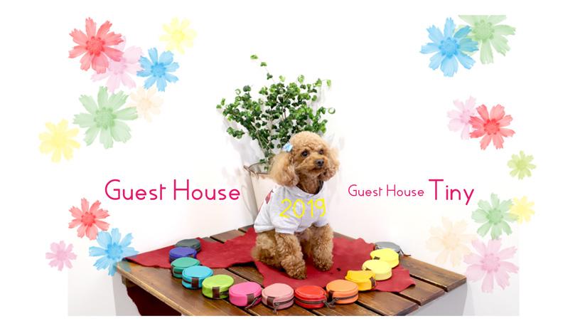 Sosakuya Miyazaki Guest House & Tiny / HitoShio