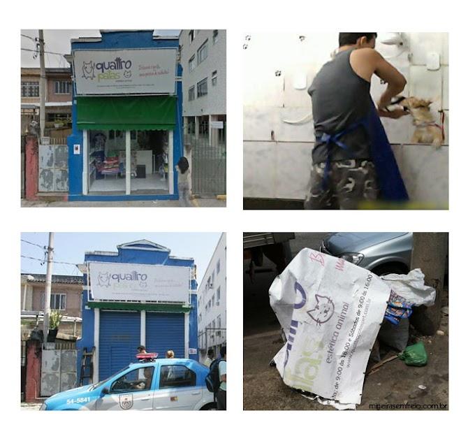 """Pet Shop 4 Patas - como a sociedade destrói em nome da """"justiça"""""""