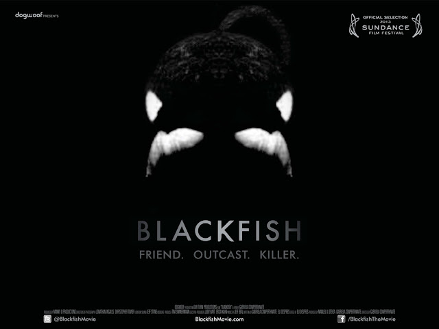 Blackfish Quad Film Poster