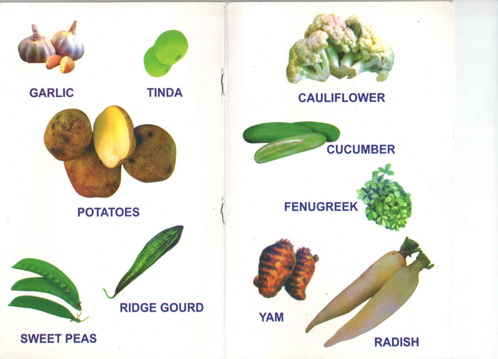 Vegetables List Bonala Kondal: The lis...