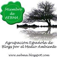 AEBMA