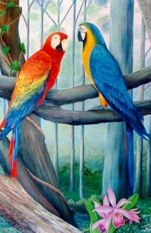 Cuadros pinturas oleos bonitos cuadros con aves pintura - Cuadros muy bonitos ...