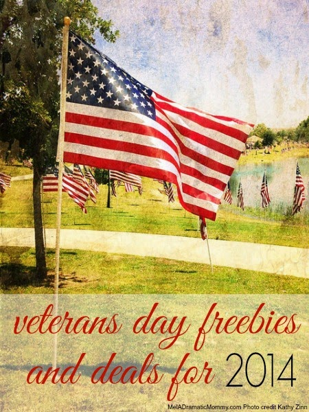 Veterans Day Freebies, Offers and Deals for 2014