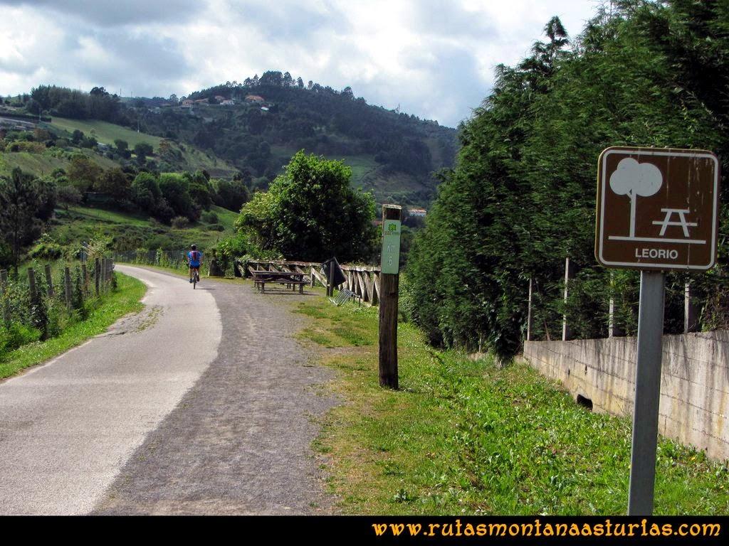 Senda Verde Camocha - Pico Sol - Piles: Área de descanso en la senda verde