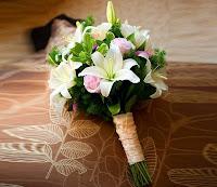 hoa huệ tây