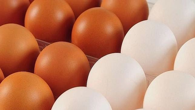Animales cuarta mesa for Cocinar yema de huevo
