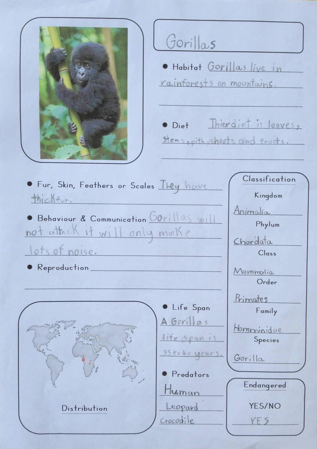 m is for monkey printable notebooking pages