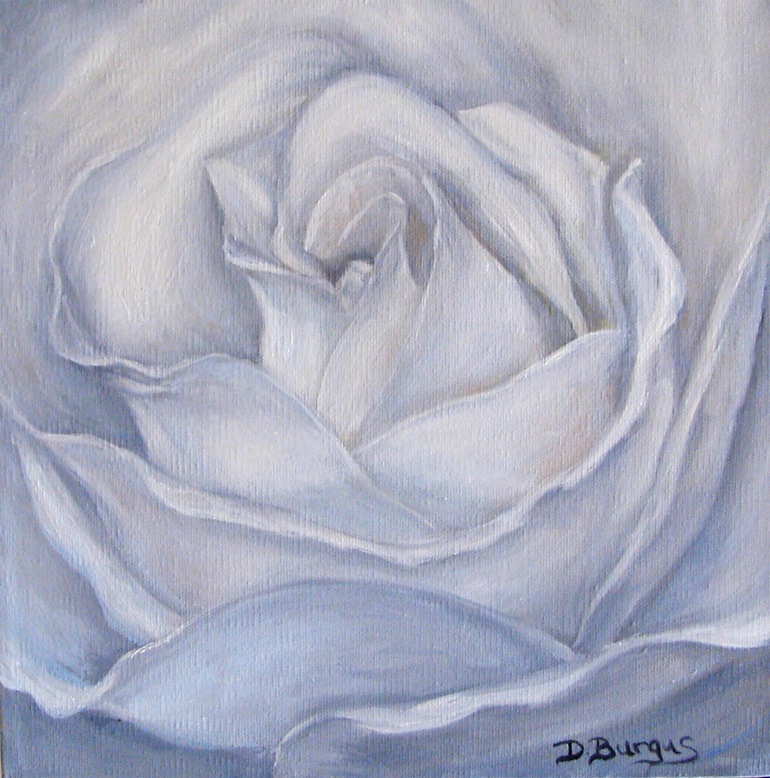 Art Helping Animals Floral Art White Rose Oil Painting By Della Burgus