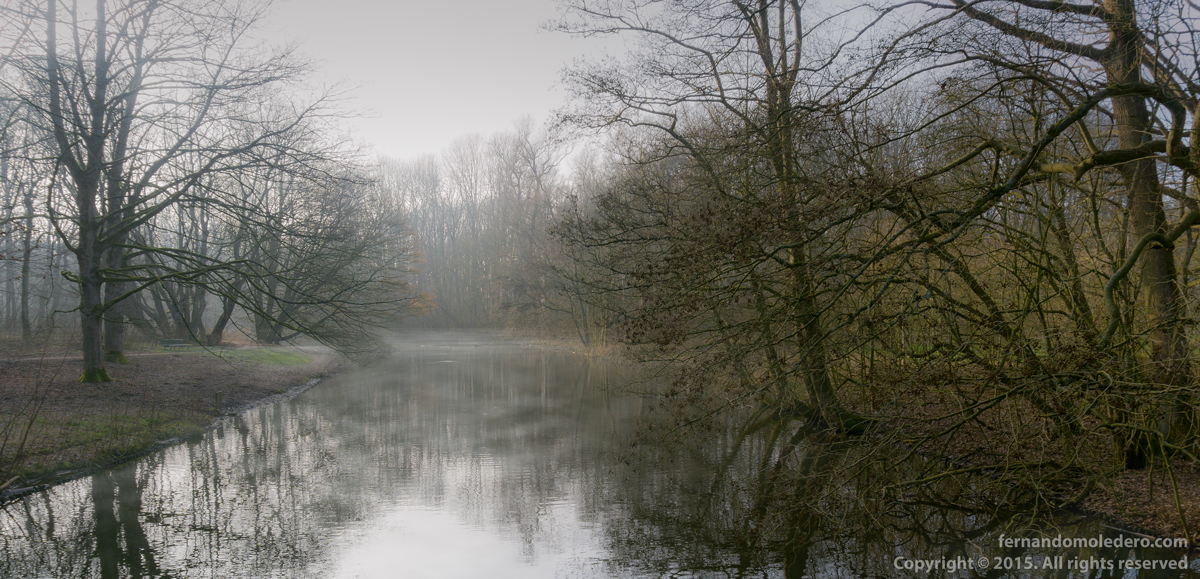 Amsterdamse Bos forest park foggy lake river autumn fall grey