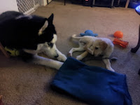 Pearl and Kita meet for the first time.