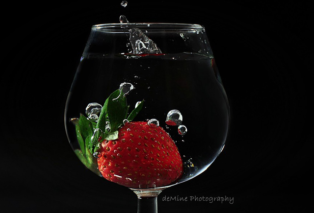 still life photographs