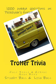 Get 10% off Trotter Trivia now!