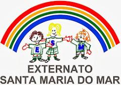 Carmo Vasconcelos, Actividades Educativas lda.