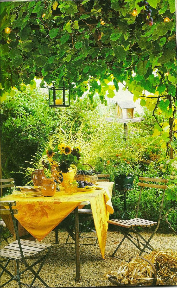 gardening fruit and garden lover Welcome to gurney's seed & nursery co, offering tested and researched varieties for your garden.