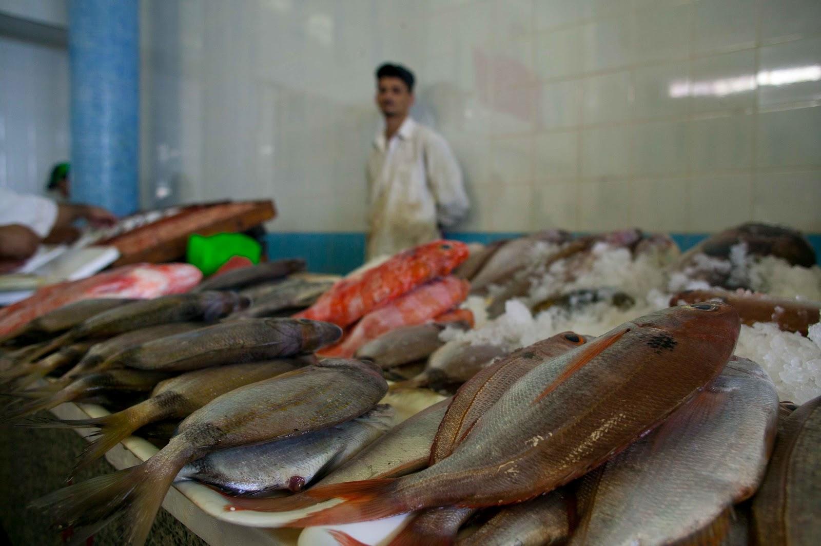 Freakonomics � The Inefficiency of Local Food